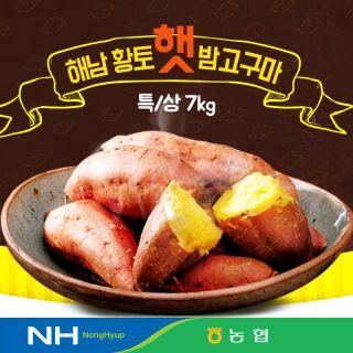 2021 화산농협 해남 황토 밤고구마 7kg, 27455원, 아임쇼핑