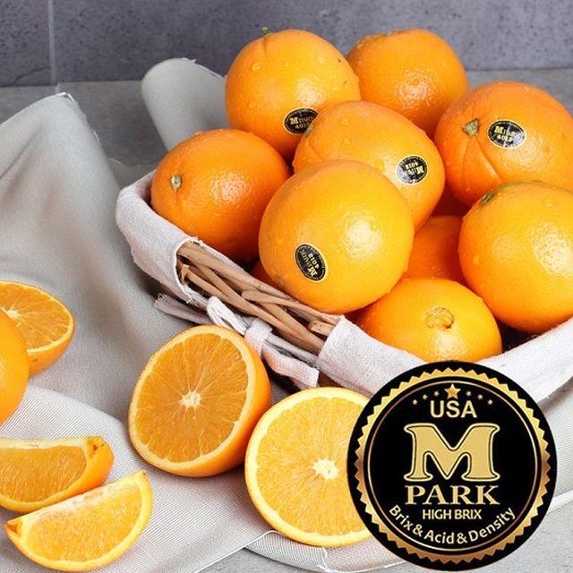 달콤 오렌지 11kg(50_52과)