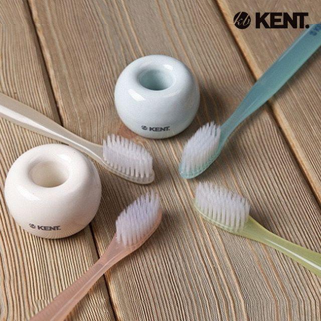 켄트 초극세모 칫솔 24개 + 도자기 칫솔꽂이 2개 + 칫솔케이스
