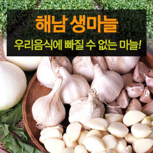 [2019] 햇 해남마늘 2세트(100통+100통)