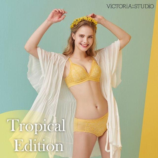 오플 [초특가 8세트] 빅토리아스튜디오 Tropical Edition