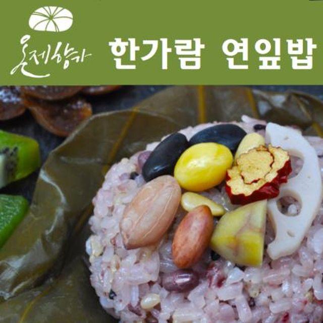 100% 국내산 온제향가 연잎밥 18팩(각180g/총3.24kg)