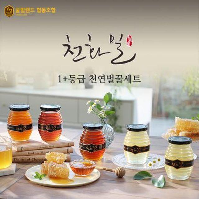 ★1+등급 천화밀 특수밀원천연벌꿀(피나무1+아카시아2+때죽나무2)