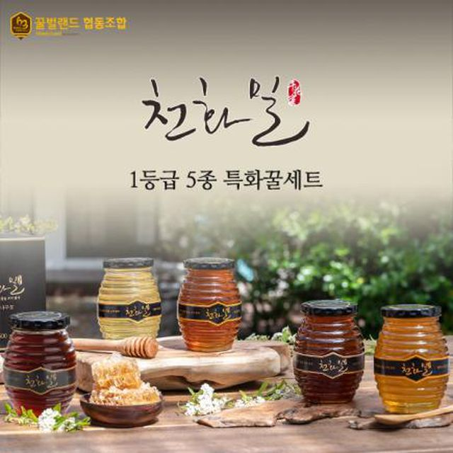 천화밀 1등급 5종특화꿀세트(피나무+때죽+아카+밤꽃+야생)