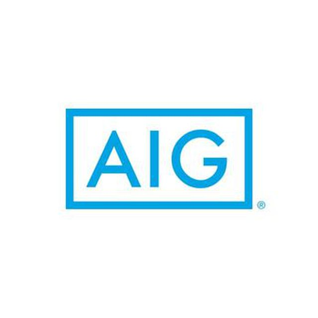 AIG 손해보험