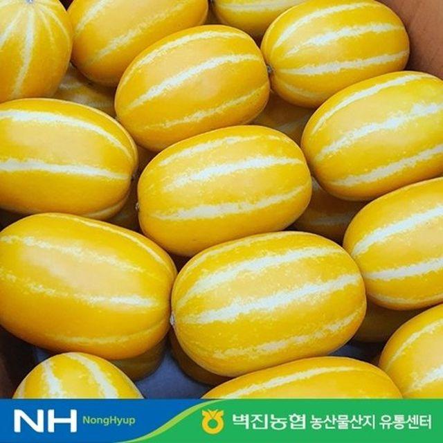 (GAP인증)농협 성주 꿀참외 3kg(8~13과)