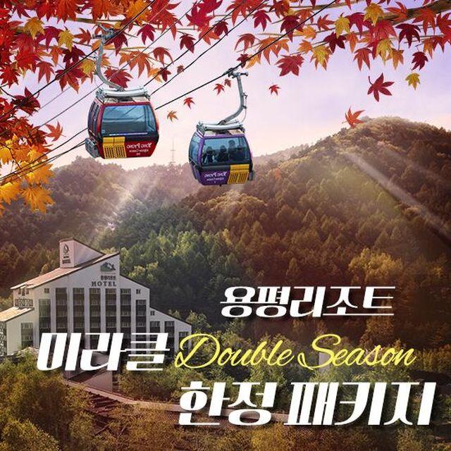 용평리조트 미라클 더블 시즌 한정 패키지 (4인)